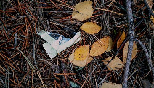 マイクロプラスチックを減らしたい-湖の周りでゴミ拾いしてみた