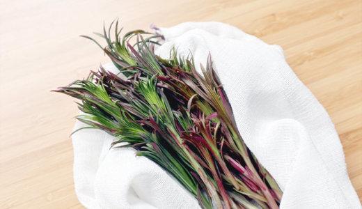 フィンランドの野草、『ヤナギラン(maitohorsma)』のオーブン焼きレシピ