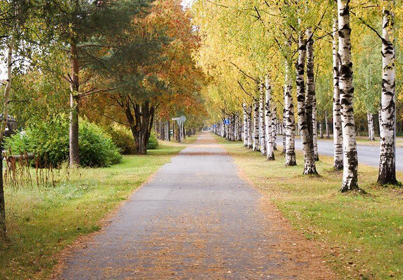 秋のフィンランド