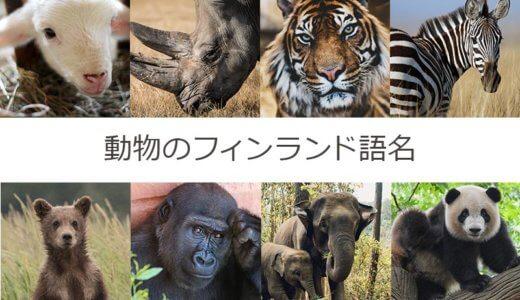 動物の名前をフィンランド語で覚えよう【哺乳類まとめ】