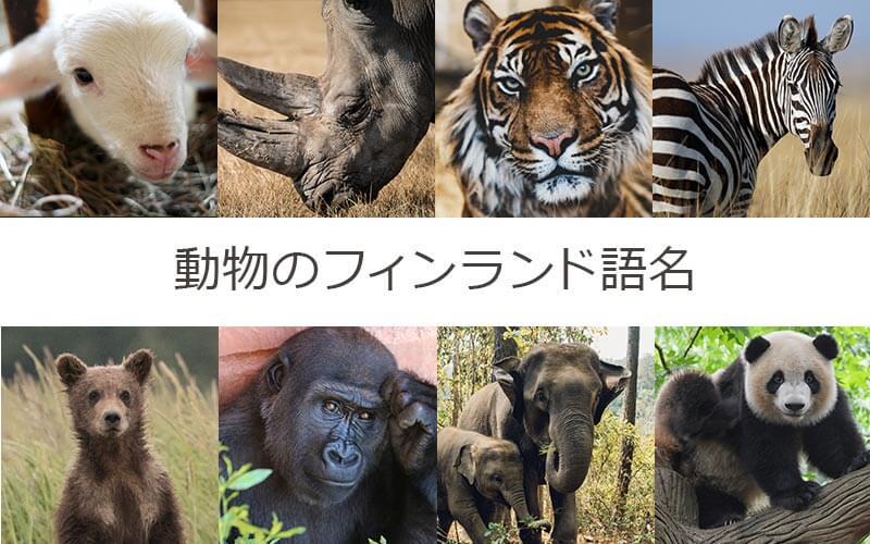 フィンランド語で動物の名前を覚えよう