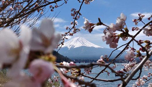 海外で自分の言動に「日本っぽさ」を感じる瞬間
